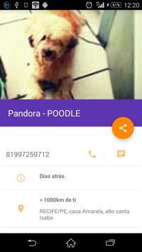 Brasil - Animais Perdidos apk screenshot
