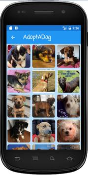 AdoptADog Puppy Adoption poster