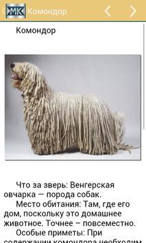 Необычные животные apk screenshot