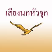 Bird's nest icon