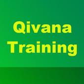 Struggling in Qivana Biz icon