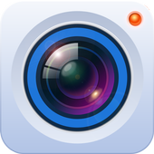 gDSS icon