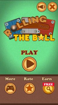 Slide Puzzle: Rolling the Ball (Unblock me) poster