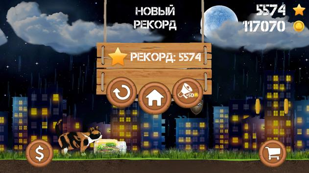 Куки Кот apk screenshot