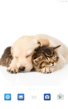 Cats And Dogs Wallpapers 2 screenshot 15