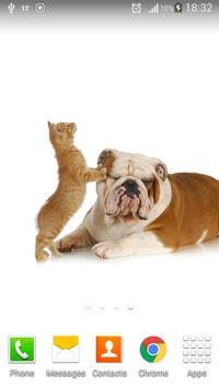 Cute Cats & Dogs Collection 3 apk screenshot