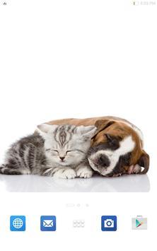 Cute Cats&Dogs Wallpapers 4 screenshot 14