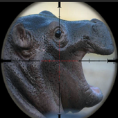 Angry and Wild hippopotamus Hunt manic Attack icon