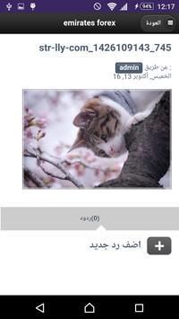 خلفيات قطط apk screenshot