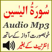 Best Surah Yaseen Audio Mp3 icon