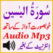 Best Sura Yaseen Tilawat Mp3 icon