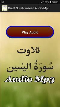 Great Surah Yaseen Audio Mp3 apk screenshot