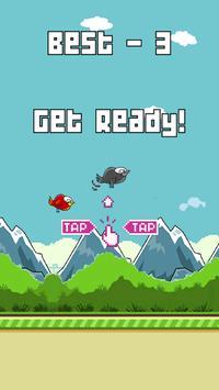 Crazy Funny Bird poster