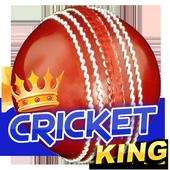 Cricket King icon