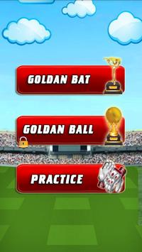 Cricket King screenshot 1