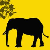 عالم الحيوان icon