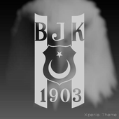 Besiktas - Xperia Theme icon