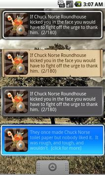 Chuck Norse Facts with Widget poster