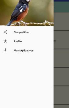 Cantos de Curió apk screenshot