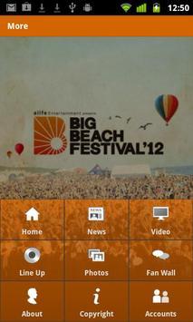 BIG BEACH FESTIVAL screenshot 4