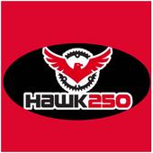 Hawk 250 icon