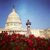 Washington DC Tour Guide - FREE icon