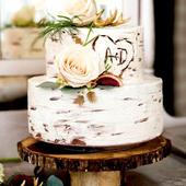 Wedding Cake Designs icon