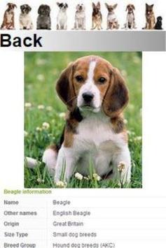 Top Best Dog Breeds apk screenshot