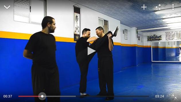 Entrenamiento Marcial screenshot 11