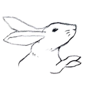 How to Draw Rabbit icon