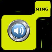 Radio streaming tutorial icon