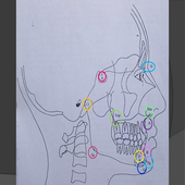 Cefalometria de Steiner icon
