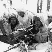 World War 2 Weapons - Finnish icon