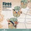 Fires Girona 2016 아이콘