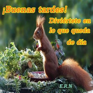 Imágenes De Buenas Tardes Frases Saludos screenshot 7