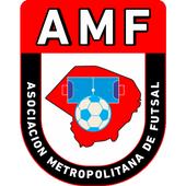 Metro Futsal icon