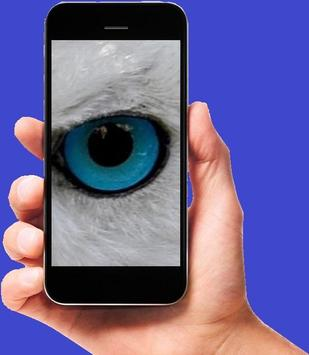 OJOS apk screenshot
