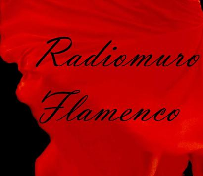 Radios de Flamenco apk screenshot