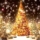 Christmas Tree LWP - MobSol icon