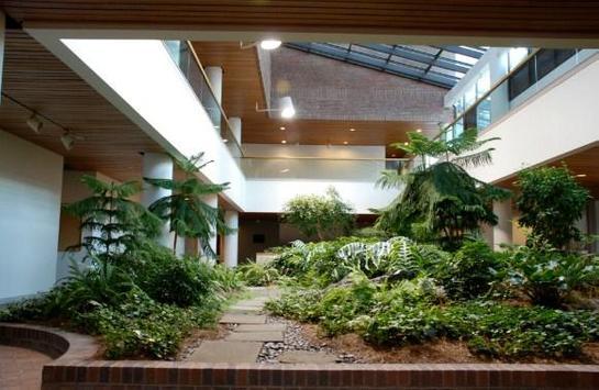 Modern Indoor Garden screenshot 2