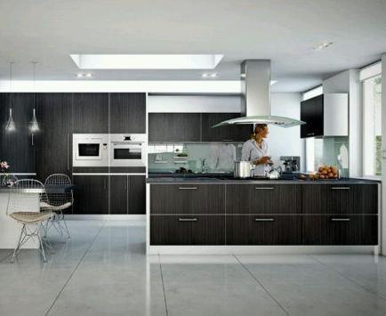 Modern Kitchen Designs screenshot 1