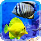 Colorful Fishes Live Wallpaper icon