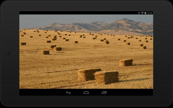 Country Wallpapers screenshot 5
