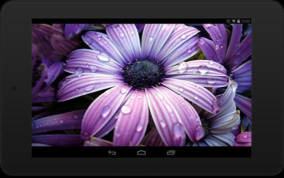 Flower  Wallpapers screenshot 7