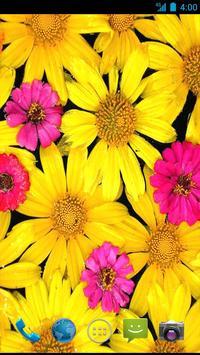 Flower  Wallpapers screenshot 3