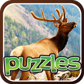 Free Forest Animal Puzzles icon