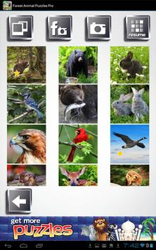 Free Forest Animal Puzzles apk screenshot