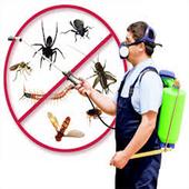 التخلص من البعوض والناموس والحشرات نهائياً icon