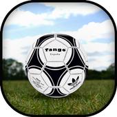 Soccer / Football Ball icon