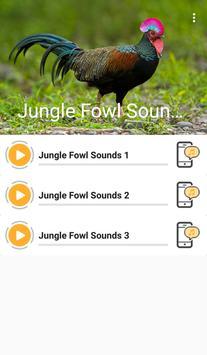 Junglefowl Sounds apk screenshot
